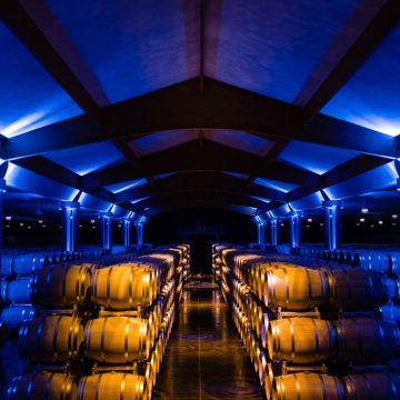 Barriques de vin du médoc entreposées dans le chai