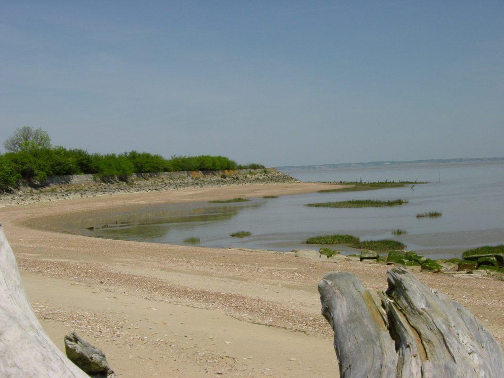 Estuaire de la Gironde près des vignes de Médoc